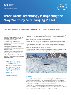 Drone Expedition Advances Polar Bear Research