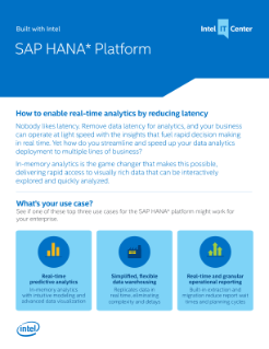 Real-Time Analytics: SAP HANA* Software and Intel® Technologies